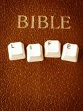 Vida de la biblia Imágenes de archivo libres de regalías