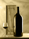 Vida de la botella y todavía del vidrio de vino Imagen de archivo libre de regalías
