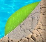 Vida de la ecología y concepto del agua Fotografía de archivo libre de regalías