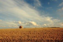 Vida de la granja Imagen de archivo libre de regalías