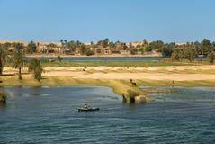 Vida de la orilla del Nilo Imagen de archivo libre de regalías