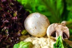 Vida de las setas y todavía de las verduras crudas de la coliflor imágenes de archivo libres de regalías