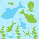 Vida de los habitantes del mar Imagen de archivo libre de regalías
