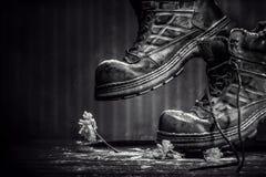 VIDA de los zapatos-AÚn del malo ¡! Fotografía de archivo libre de regalías