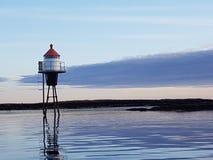 Vida de mar Fotos de archivo libres de regalías