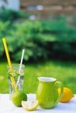Vida de restauración de la limonada aún Fotografía de archivo