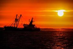 Vida de um homem do fisher no mar do rhe imagens de stock