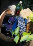 Vida de Vstill con el vino y las uvas Imagen de archivo libre de regalías