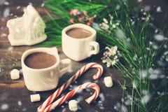 Vida del Año Nuevo o todavía de la Navidad con dos tazas de chocolate caliente Imágenes de archivo libres de regalías