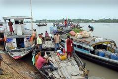 Vida del agua de Sundarban Fotografía de archivo libre de regalías