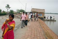 Vida del agua de Sundarban Imágenes de archivo libres de regalías