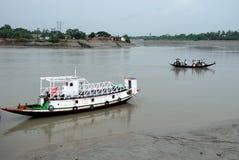 Vida del agua de Sundarban Fotos de archivo libres de regalías