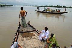 Vida del agua de Sundarban Foto de archivo