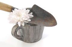 Vida del concepto que cultiva un huerto aún con las espadas, el pote y la flor blanca Fotos de archivo