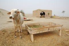 Vida del este de la aldea Imagenes de archivo