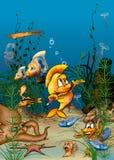 Vida del océano Imagen de archivo libre de regalías