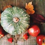 Vida del otoño (caída) aún Foto de archivo libre de regalías