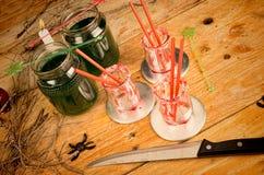 Vida del stiil de la bebida del verde de Scarry Foto de archivo