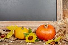 Vida del travesaño del otoño de la pizarra con la calabaza Foto de archivo libre de regalías
