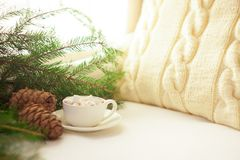 Vida del travesaño del invierno con el cacao, las melcochas, el pino y los conos calientes, vista delantera Imagen de archivo