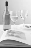 Vida del vino y todavía del libro Imagen de archivo libre de regalías