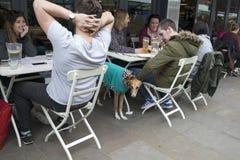 Vida do café da rua Menina de sorriso encaracolado que fala com os amigos fora da barra Imagem de Stock Royalty Free