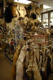 VIDA DO _DAILY DE ALASKA/USA EM KETCHIKAN fotografia de stock royalty free