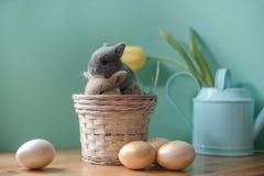 Vida do destilador da Páscoa com coelhos pequenos em uma cesta imagem de stock royalty free