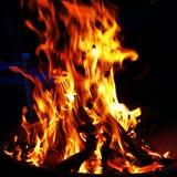 Vida do fogo Fotografia de Stock Royalty Free