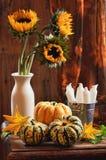 Vida do girassol & dos Gourds ainda Fotografia de Stock Royalty Free