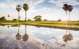 A vida do Lao Fotos de Stock Royalty Free