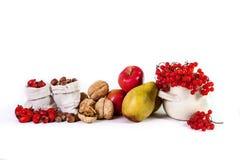 A vida do outono ainda do viburnum nuts das peras das maçãs do fruto isolou o Foto de Stock