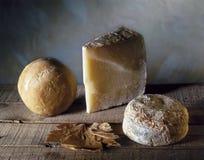 Vida do queijo duro ainda Foto de Stock Royalty Free