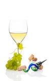 Vida do vinho branco ainda. Imagens de Stock