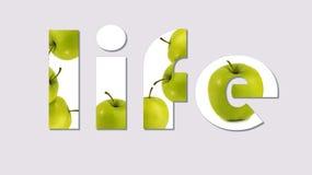 Vida e saúde Fundo cinzento Imagem de Stock Royalty Free