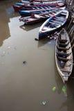 Vida en el agua en Sunda Kelapa Puerto-Jakarta Imagen de archivo