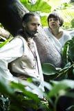 Vida en bosque salvaje Foto de archivo libre de regalías