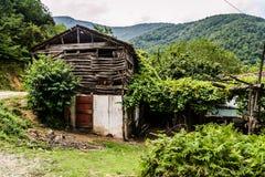 Vida en el campo en Turquía Fotografía de archivo