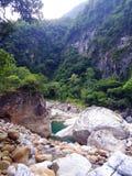 vida en la isla de Formosa fotografía de archivo libre de regalías