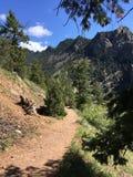 Vida exterior de Colorado fotos de stock royalty free