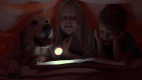 Vida feliz com animais de estimação - crianças pequenas na noite que leem um livro sob as tampas com seu cão grande vídeos de arquivo