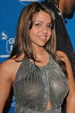 Vida Guerra. At the Inaugural GRAMMY Jam Event Featuring Earth, Wind & Fire at the Wiltern LG Theater, Los Angeles, CA. 12-11-04 Royalty Free Stock Photos