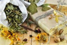 Aún vida homeopática con las hojas secadas, las flores y el libro viejo Imagen de archivo libre de regalías