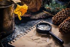 Vida imóvel chuvosa com elementos da lupa e da decoração da floresta fotografia de stock royalty free