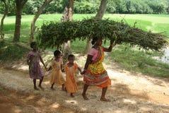 Vida indiana da vila Fotografia de Stock Royalty Free