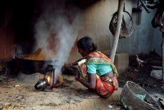 Vida indiana da vila imagens de stock royalty free