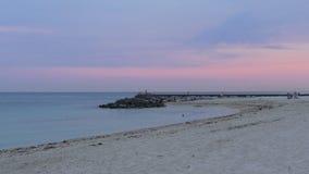 Vida 4k la Florida los E.E.U.U. de la playa del embarcadero del océano de la puesta del sol del verano de Miami metrajes