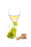 Vida lujosa todavía del vino blanco. Foto de archivo