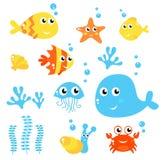 Vida marinha - coleção do mar e dos peixes. Imagens de Stock