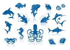 Vida marinha e grupo do ícone dos peixes Imagem de Stock Royalty Free